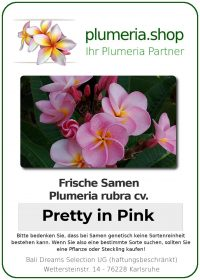 """Plumeria rubra """"Pretty in Pink"""""""