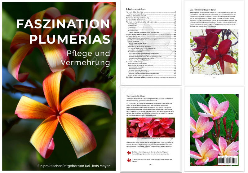 Plumeria Ratgeber, Buch, A5