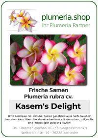 "Plumeria rubra ""Kasem's Delight"""