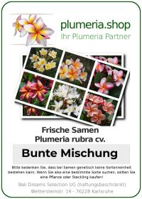 Bunte Plumeria Samen Mischung