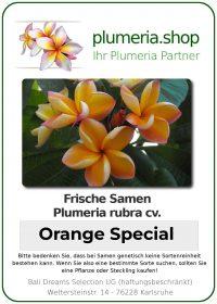 """Plumeria rubra """"Orange Special"""""""