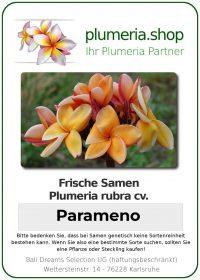 "Plumeria rubra ""Parameno"""