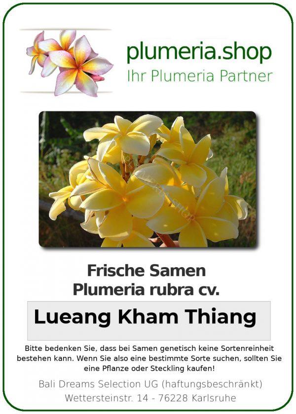"""Plumeria rubra """"Lueang Kham Thiang"""""""