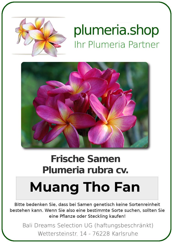 "Plumeria rubra ""Muang Tho Fan"""