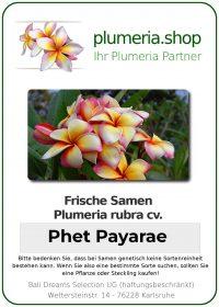"Plumeria rubra ""Phet Payarae"""