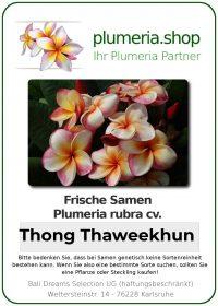 "Plumeria rubra ""Thong Thaweekhun"""