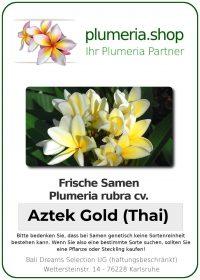 """Plumeria rubra """"Aztek Gold (Thai)"""""""