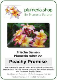 """Plumeria rubra """"Peachy Promise"""""""