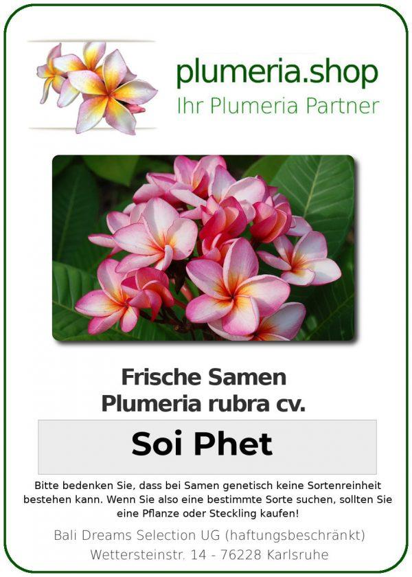 """Plumeria rubra """"Soi Phet"""""""